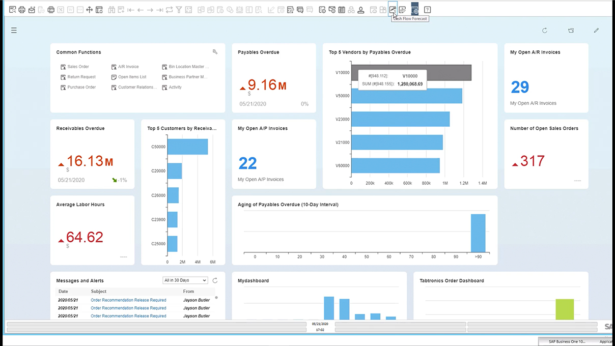 Screenshot_Working with the HANA Cash Flow Forecast Report in SAP